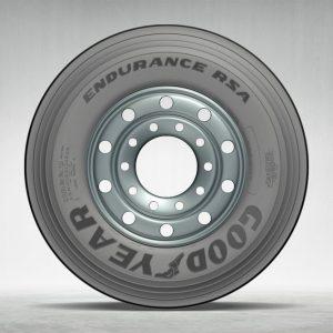 Big-EnduranceRSA-2